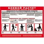 Боевой расчет добровольной пожарной дружины/ С-БР
